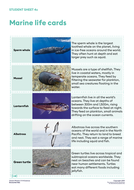 Student-Sheet-4c-Marine_life_cards-OP1114Sci.pdf