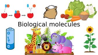 AQA A Level Biology Unit 1 (1/3)