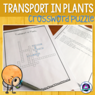 Transport in Plants Crossword Puzzle