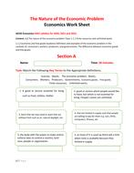 Work-Sheet-IGCSE-Economics---The-Nature-of-the-Economic-Problem.pdf