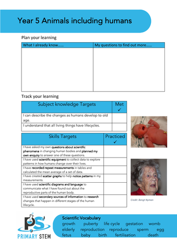 Editable Primary Science topic cover pages - Upper  KS2