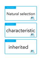 Year-6-Evolution-and-inheritance-Key-Words.pdf