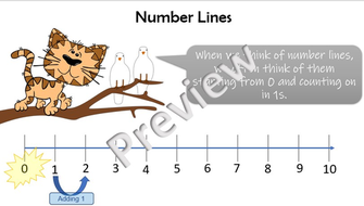 Preview-2-Number-line-input.jpg
