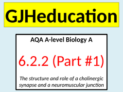 Cholinergic-synapses-and-neuromuscular-junctions.pptx