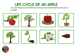 Apple-Day-Worksheets-PDF.pdf