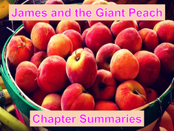Chapter-Summaries-for-Class.ppt