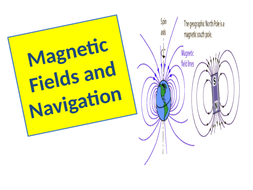 Magnetic-fields-and-navigation.pptx