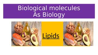 Biological Molecules: LIPIDS