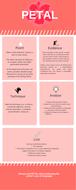 PETAL-for-analysing-writers-use-of-languagev2ALL.pdf