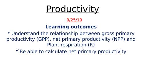 Productivity - GPP and NPP