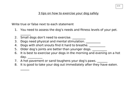 2.11_3-tips-on-how-to-exercise-your-dog-safely.docx