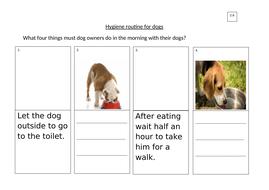 2.6_Hygiene-routine-for-dogs_LA.docx