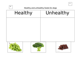 2.1_Healthy-and-unhealthy-foods-for-dogs.docx