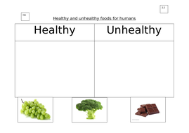 2.2_Healthy-and-unhealthy-foods-for-humans.docx