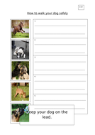 2.12_How-to-walk-your-dog-safely_AA.docx