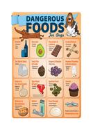 2.1_Healthy-unhealthy-foods.docx
