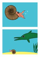 An-ammonite-becomes-a-fossil-(separate-labels).pdf