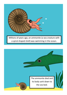 An-ammonite-becomes-a-fossil-.pdf