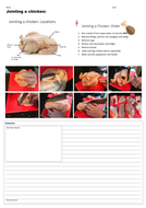 Jointing-a-chicken---Assessment-Sheet-and-Guide.pdf