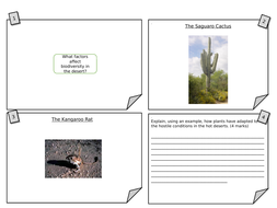 Plant-and-Animal-Adaptations-Worksheet.pptx