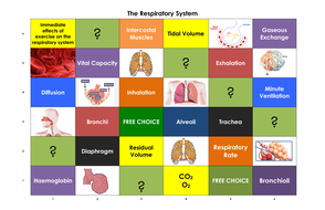 The-Respiratory-System-Learning-Grid.pdf