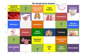 The-Respiratory-System-Learning-Grid.docx