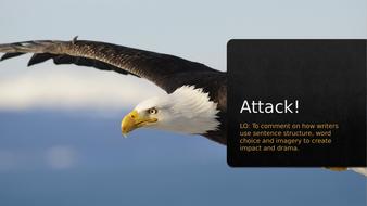L6.-Attack!.pptx