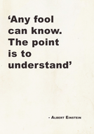 Enstein quote 2 A4 poster