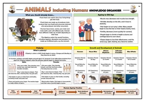 Year 5 Animals including Humans Knowledge Organiser!