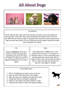 Lesson-2---All-About-Dogs.pdf