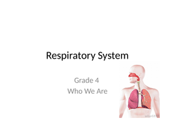 Respiratory-System.pptx