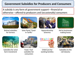 Government_Subsidies.pptx
