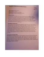 Example-Report-3.docx