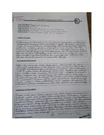 Example-Report-1.docx