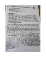 Example-Report-2.docx