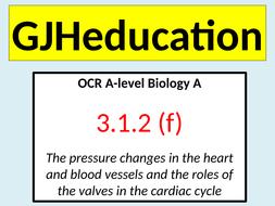 The-cardiac-cycle-and-cardiac-output.pptx
