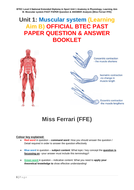 FFE-LAB-muscular-system-BTEC-QUESTIONS---ANSWERS.pdf