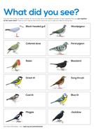 Blank-survey-sheets.pdf