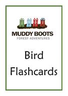 Birds.pdf