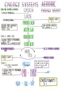 A-Level PE, OCR Aerobic System Revision Poster