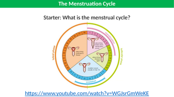 The-Menstrual-Cycle-TES.pptx