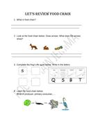 Food-Chain-Review-Worksheet.pdf