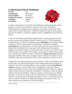 La Flor de Nochebuena Lectura y Cultura: Poinsettia Flower Spanish Reading