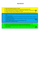 UPDATED-differentiated-worksheet.docx