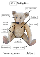 teddy-bear-old-new-answer-poster.pdf