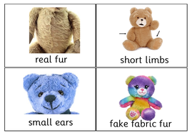 quiz_quiz_trade_teddy_bear_features.pdf
