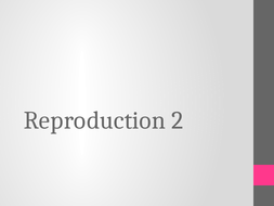 2.3-Reproduction-2.pptx