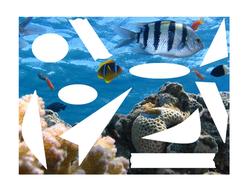 Under-sea-words.jpg