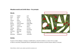 Meadow-words-GUIDE.pdf