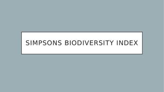Simpons-Index-.pptx